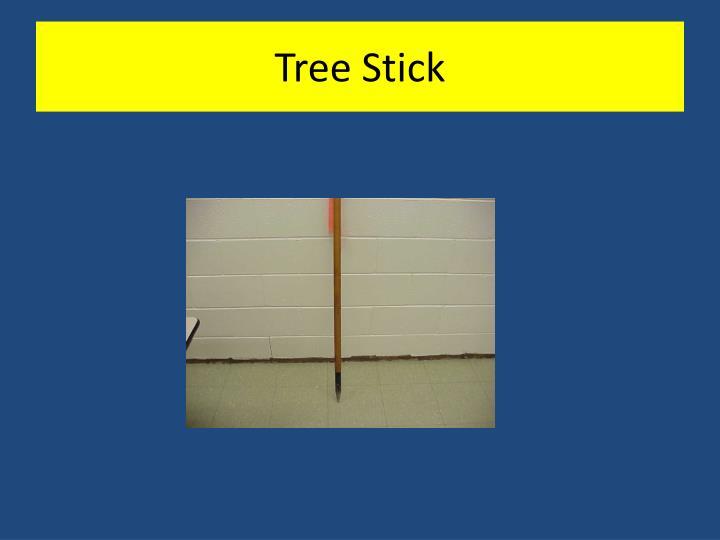 Tree Stick