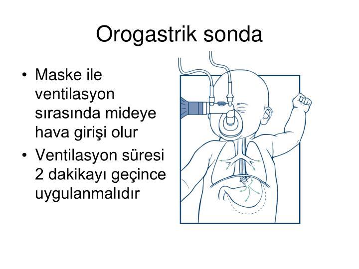 Orogastrik sonda