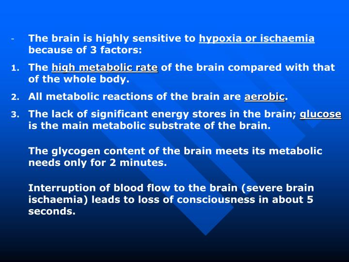 The brain is highly sensitive to