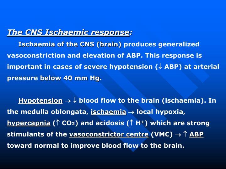The CNS Ischaemic response