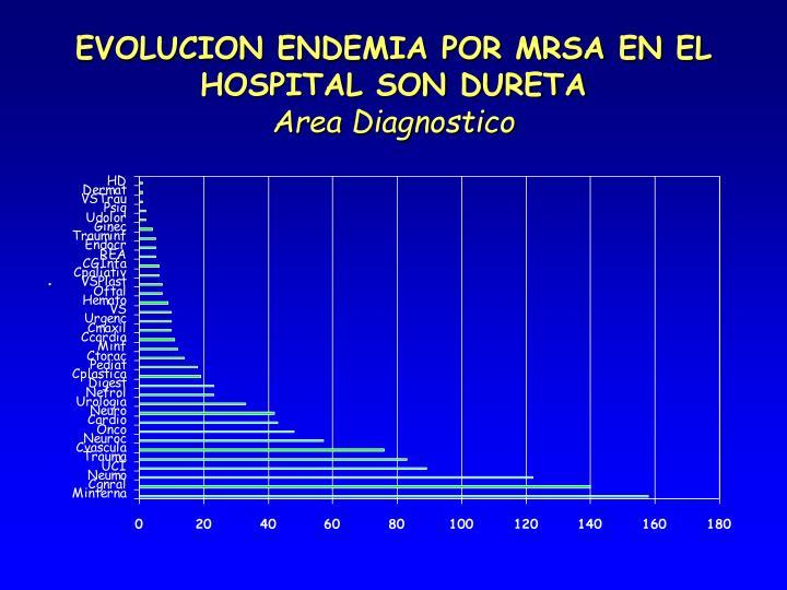 EVOLUCION ENDEMIA POR MRSA EN EL HOSPITAL SON DURETA