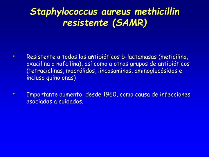 Staphylococcus aureus methicillin resistente (SAMR)
