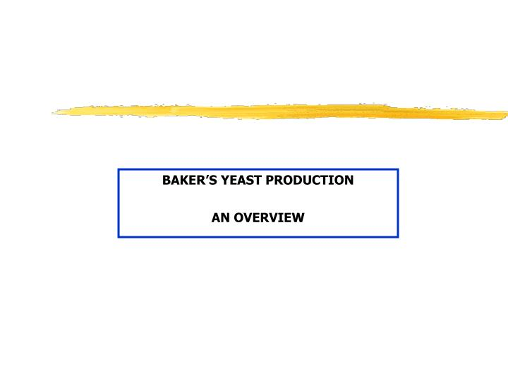 baker s yeast production an overview n.