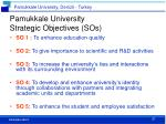 pamukkale university strategic objectives sos