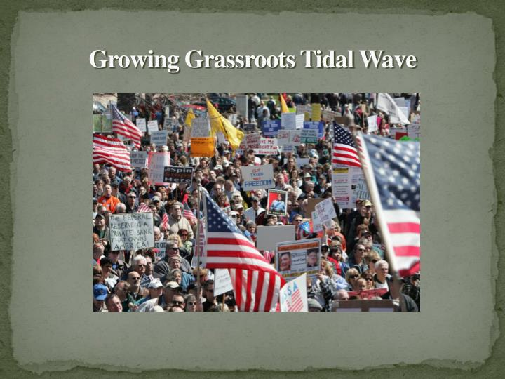 Growing Grassroots Tidal Wave