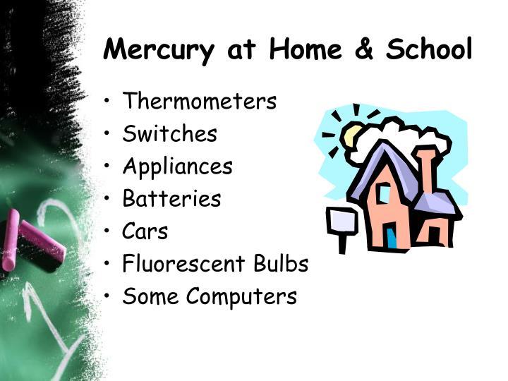 Mercury at Home & School