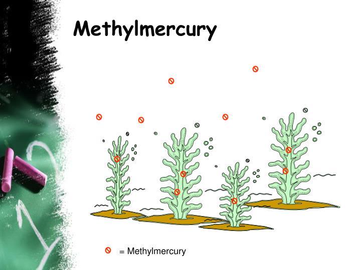 Methylmercury