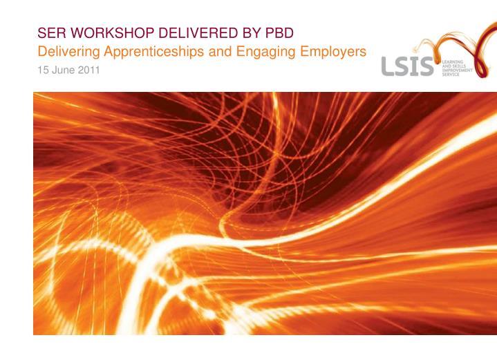 ser workshop delivered by pbd n.