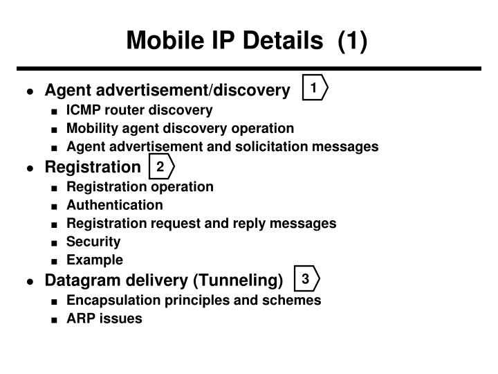 Mobile IP Details  (1)
