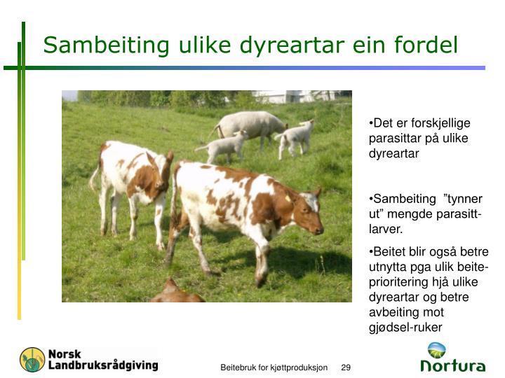 Sambeiting ulike dyreartar ein fordel