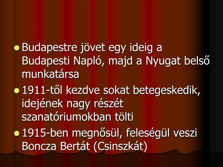 Budapestre jövet egy ideig a Budapesti Napló, majd a Nyugat belső munkatársa