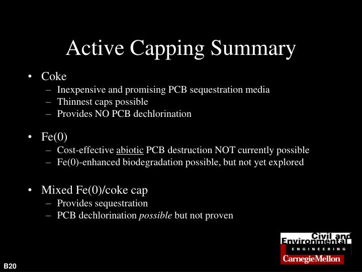 Active Capping Summary