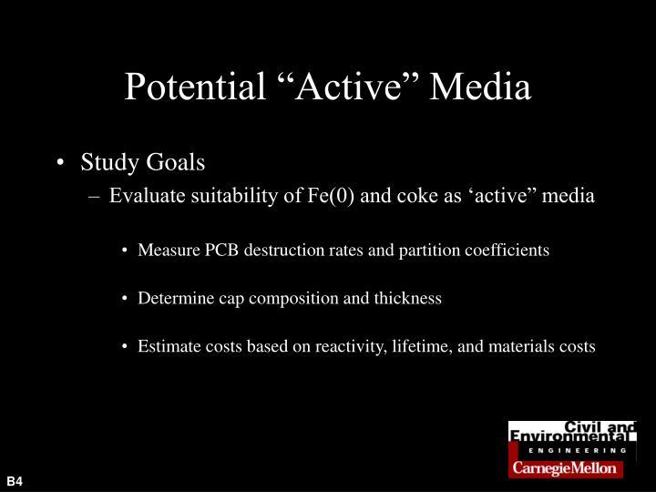 "Potential ""Active"" Media"