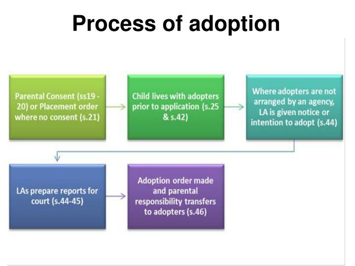 Process of adoption
