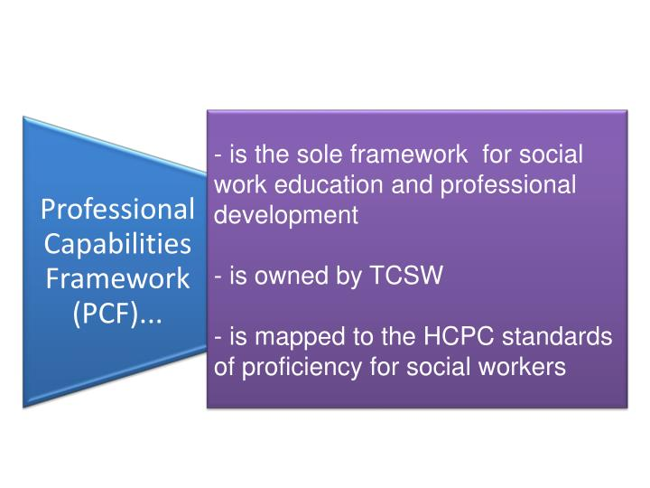 - is the sole framework  for social   work education and professional development