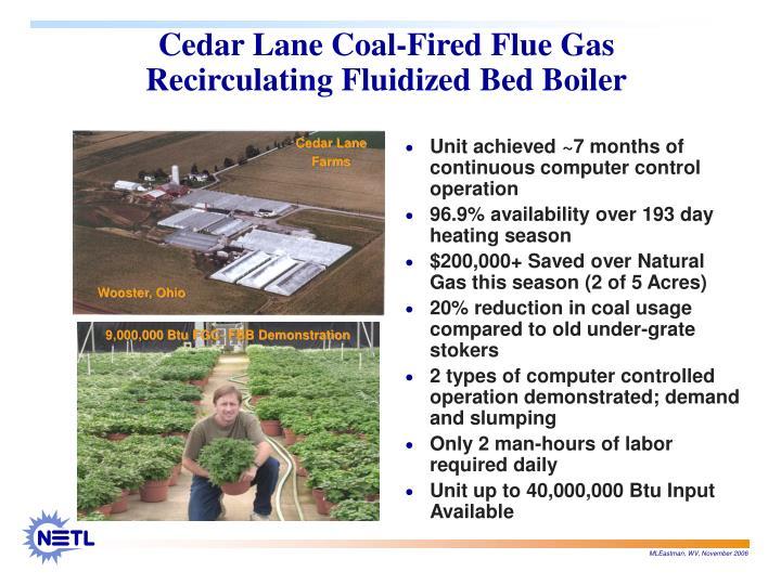 Cedar Lane Coal-Fired Flue Gas Recirculating Fluidized Bed Boiler