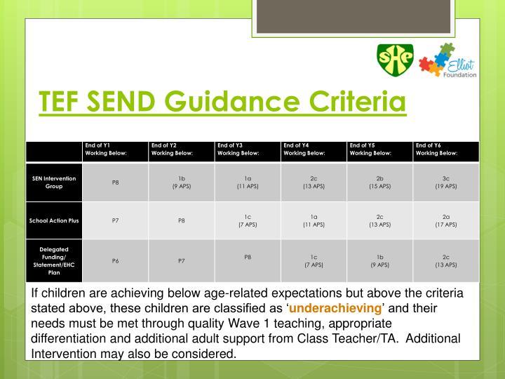 TEF SEND Guidance Criteria