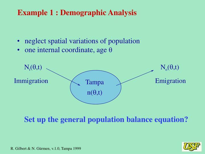 Example 1 : Demographic Analysis