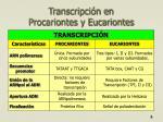 transcripci n en procariontes y eucariontes