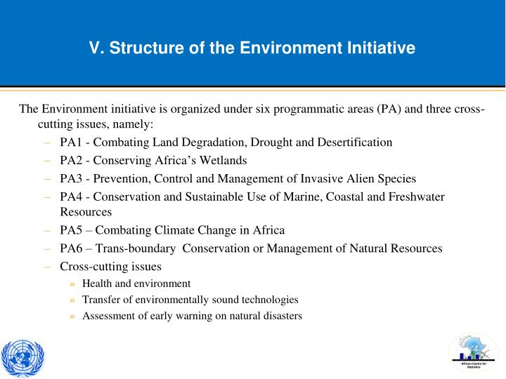 V. Structure of the Environment Initiative