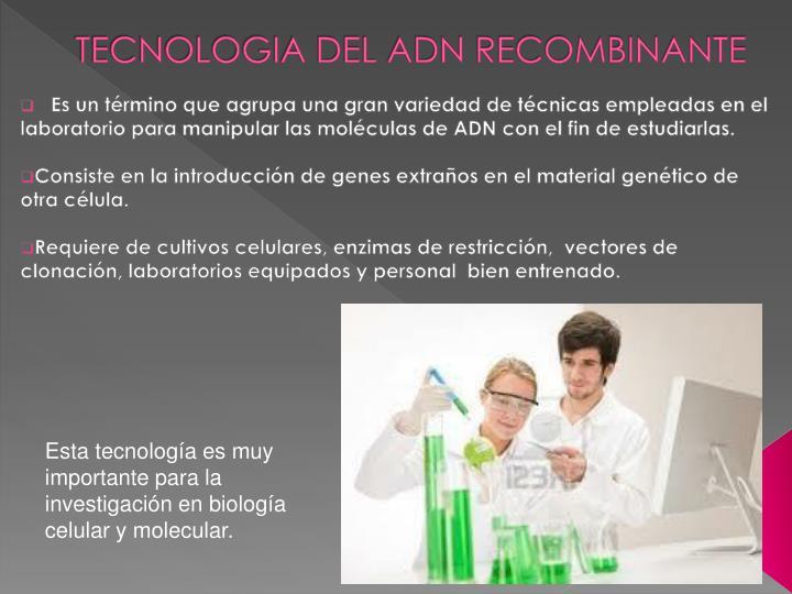 TECNOLOGIA DEL ADN RECOMBINANTE