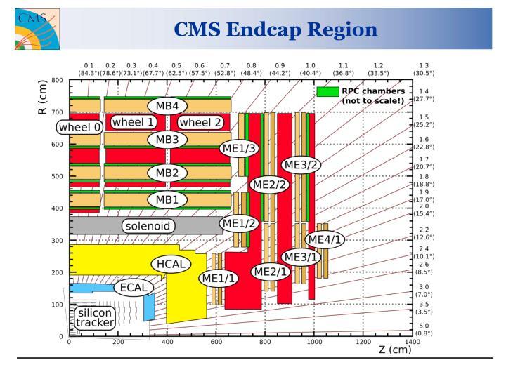 Cms endcap region