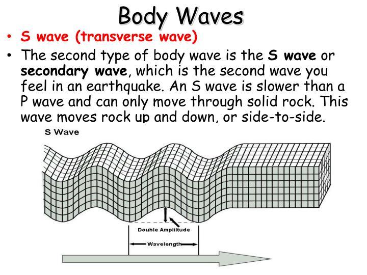Body Waves
