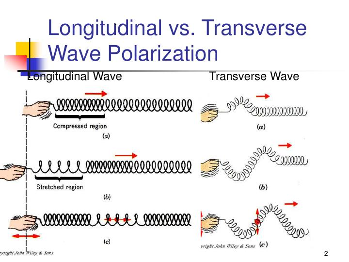 Longitudinal vs transverse wave polarization