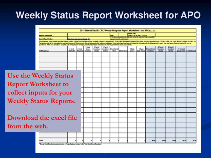 Weekly Status Report Worksheet for APO