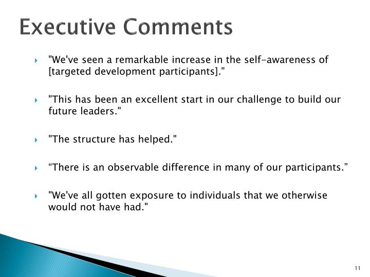 Executive Comments