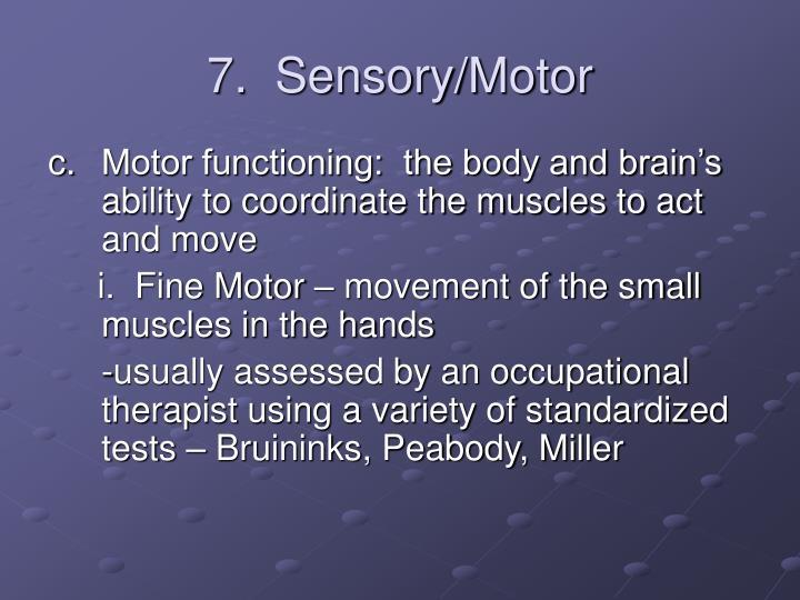 7.  Sensory/Motor