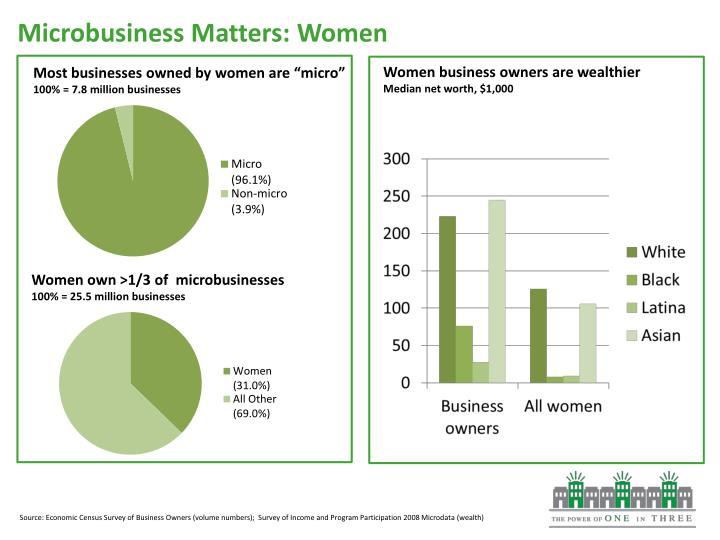 Microbusiness Matters: Women
