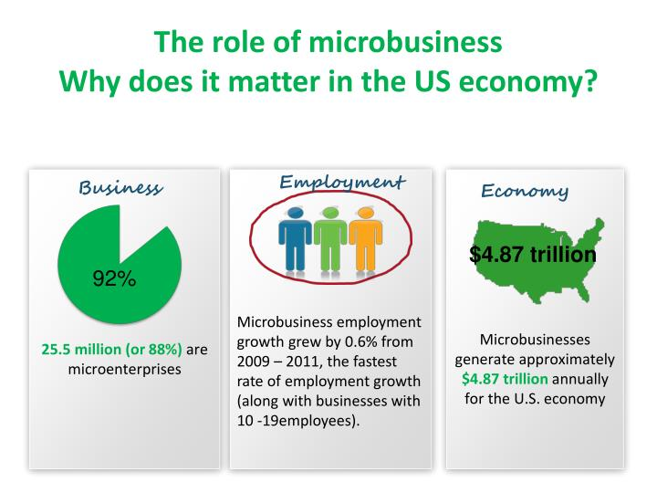 The role of microbusiness