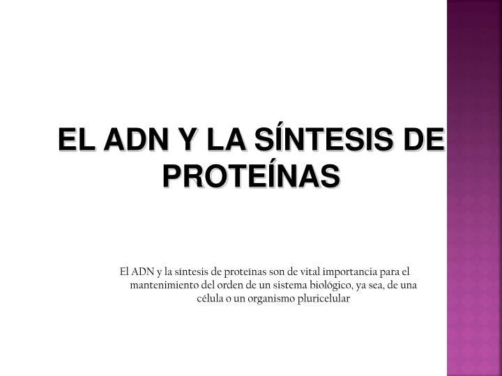 slide1 n.