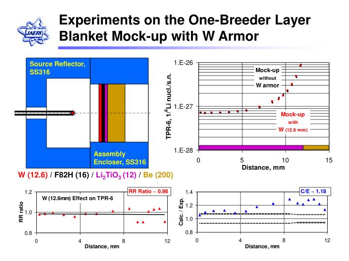 Experiments on the One-Breeder Layer Blanket Mock-up with W Armor