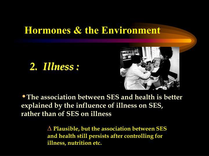 Hormones & the Environment