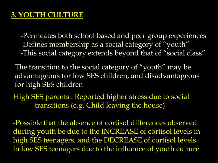 3. YOUTH CULTURE