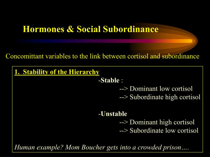 Hormones & Social Subordinance