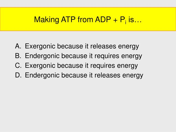 Making ATP from ADP + P