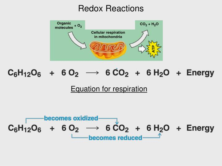Redox Reactions
