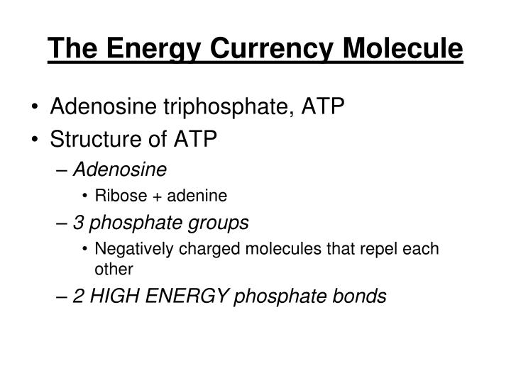 The Energy Currency Molecule