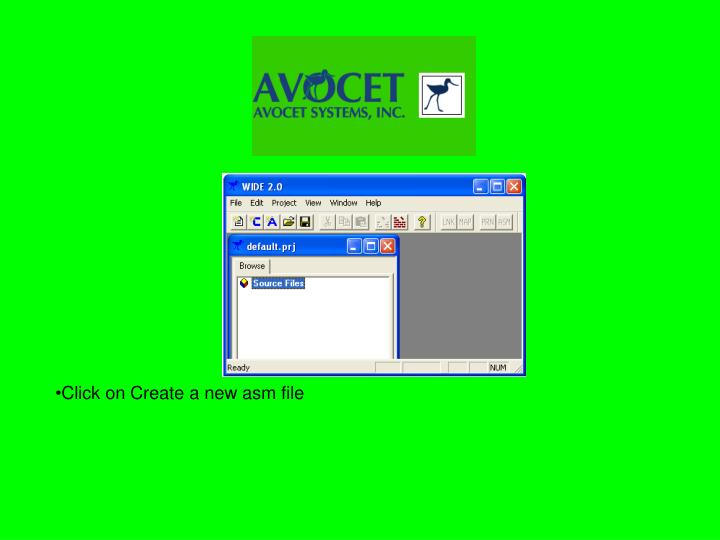 Click on Create a new asm file