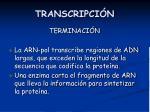transcripci n6