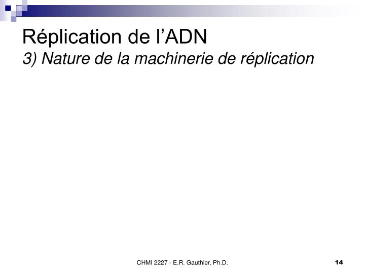 Réplication de l'ADN