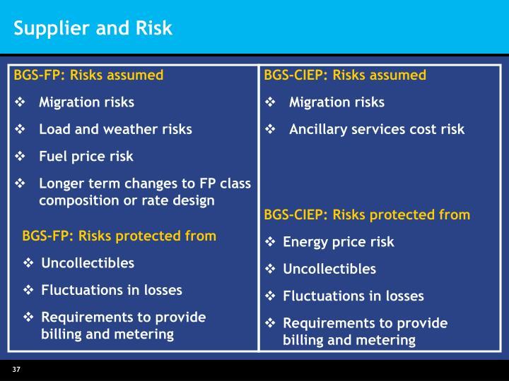 BGS-FP: Risks assumed