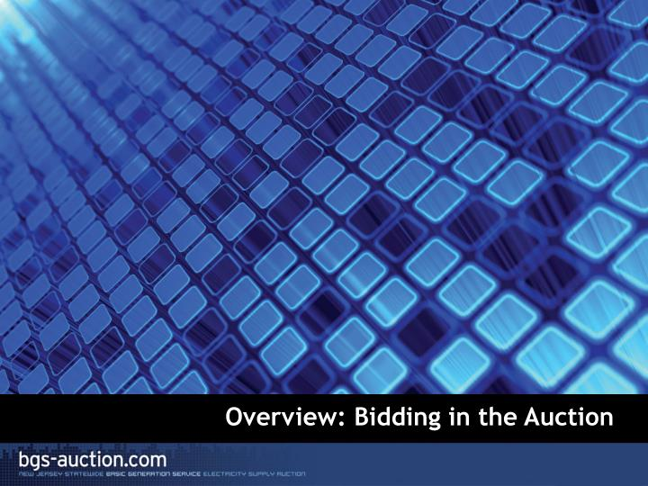Overview: Bidding in the Auction