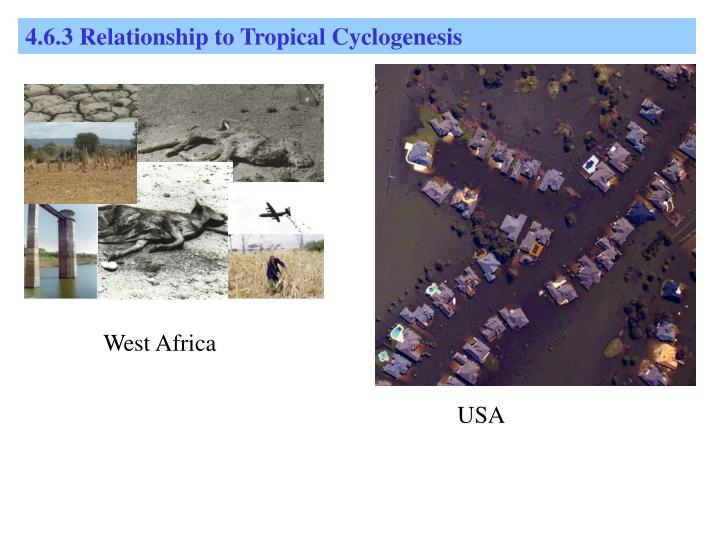 4.6.3 Relationship to Tropical Cyclogenesis