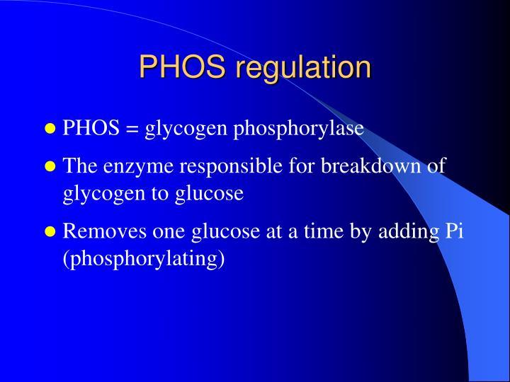 PHOS regulation