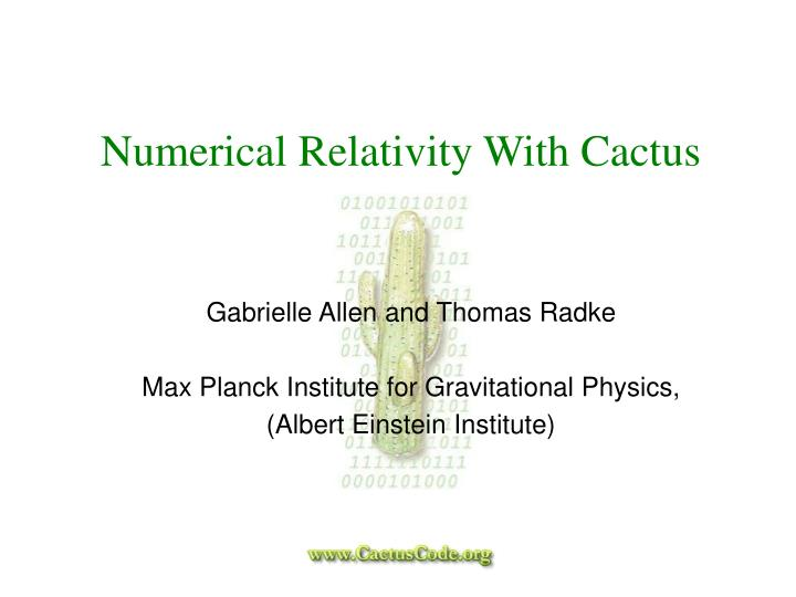 Numerical relativity with cactus