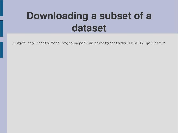 Downloading a subset of a dataset